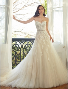 Court Train Ivory Bridal Wedding with Sweetheart  Embroidery