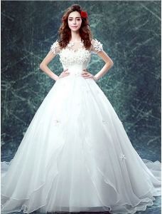 Ball-Gown Cathedral  Wedding Dress With Appliques Rhinestones